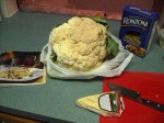 Giant Cauliflower